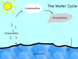 the water cycle diagram diagram site