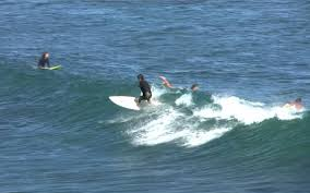 thanksgiving surf surfers set travel trends study finds travel leisure