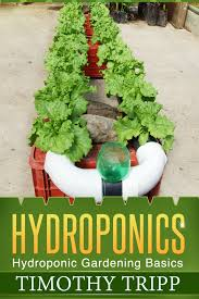 buy hydroponic basics soiless gardening indoors 800980 in cheap