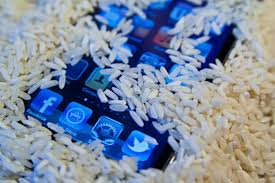Phone Rice Meme - can rice actually save your wet phone the verge
