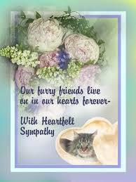 pet loss sympathy cards pet sympathy cards