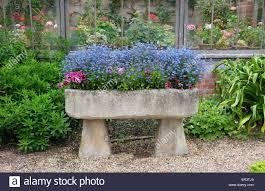 water trough planter stone trough planter stock photos u0026 stone trough planter stock