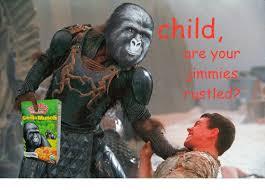 Gorilla Munch Meme - oruanic gorilla munch suuten free re your immies ustled free meme