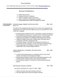 Sample Federal Resume Resume Examples For It Jobs Best Resume Examples For Your Job