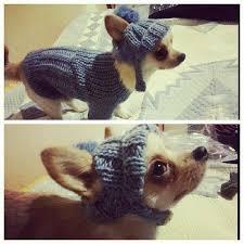 best 25 dog sweaters ideas on pinterest dog sweater pattern