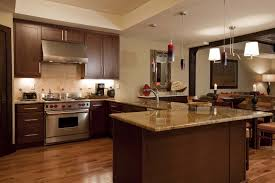 painting kitchen cabinets photo u2014 decor trends painting kitchen