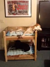 Doggie Bunk Beds Diy Pallet Bunk Pet Bed 101 Pallets