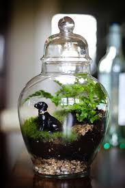 31 miniature diy terrarium ideas you better try
