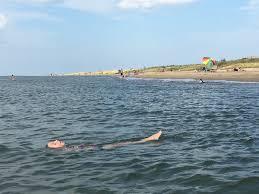 Virginia Beach Maps And Orientation Virginia Beach Usa by Fun Things To Do In Virginia Beach Va With Kids Trekaroo