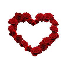 flower heart valentine u0027s day ipad wallpaper