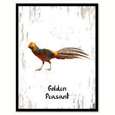 birds u2013 spotcolorart