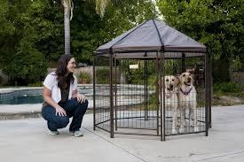review the advantek pet gazebo animal hub