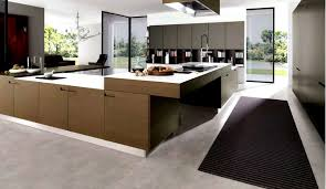 contemporary kitchen cabinets designs for beauty and function
