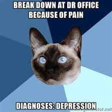 Make Your Own Cat Meme - create your own images with the chronic illness cat meme generator