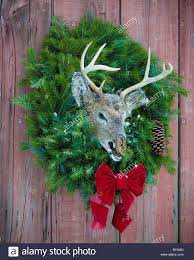 deer christmas display stock photo royalty free image 33896482