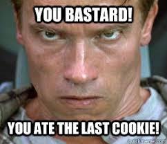 Arnold Schwarzenegger Memes - you bastard you ate the last cookie arnold schwarzenegger in