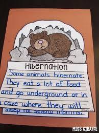 221 best kindergarten science animals in winter images on