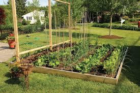 fall raised veg garden vegetable garden design raised beds home
