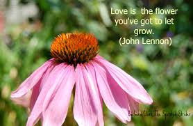 Flower Love Quotes by Appreciating Great Quotes U2013 Day 13 U2013 The Gab Of Gratitude