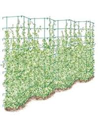 Stainless Steel Trellis System Amazon Com Frame It All Veggie Wall Expandable Stainless Steel