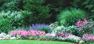 Cottage Garden Layout Fall Planting A Cottage Garden How To Plant A Cottage Garden
