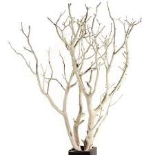 manzanita tree branches manzanita branches sandblasted 10 up to 96