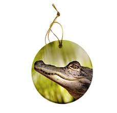 american alligator ornament huedew