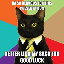 Nervous Meme - i m so nervous for this presentation cat meme cat planet cat