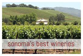 Bed And Breakfast Sonoma County Sonoma Wine Country Lodging Sonoma Best Bed And Breakfast Inns