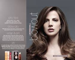 ceramic blowouts hairstyles quotes 383 best my salon stuff images on pinterest beauty products