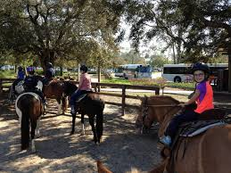 horseback trail rides at disney u0027s fort wilderness passporter com