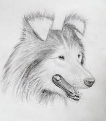 my mark crilley dog tutorial results by aviceramics on deviantart