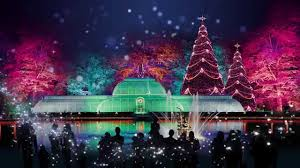 garvan gardens christmas lights 2016 christmas at kew 2015 xmas pinterest christmas garden and xmas