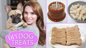 Diy Dog And Cat Treats by Diy Dog Treats Youtube