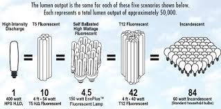 best light for plants grow light output hydro aquaponic pinterest grow lights plant