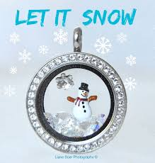 Charms For Origami Owl Lockets - best 25 origami owl charms ideas on owl charms