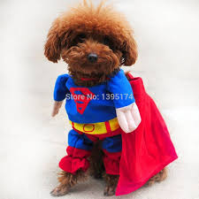 2018 Accept Custom Logo New Lovely Pet Cat Dog Superman Costume Suit
