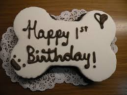 birthday cakes for dogs i believe every dog should a birthday cake i just ordered