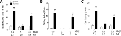canula fiore nucleus accumbens a receptors are necessary for morphine