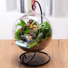 beautiful clear round glass vase hanging bottle terrarium
