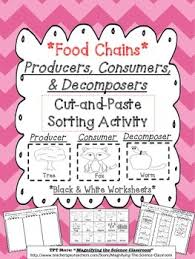 food chains producers consumers and decomposers cut and paste