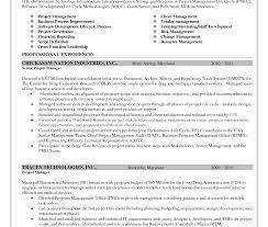 senior executive resume exles sle senior executive resume marvelous financial service marketing