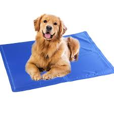 amazon com augymer pet cooling mat 23 6x19 7