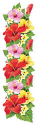 best 25 flower border clipart ideas on pinterest clipart of