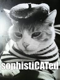 Sophisticated Cat Meme Generator - thinking cat meme ok giveaway time page 8 business cat meme imgflip