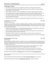 Construction Executive Resume Samples by Vp Sales Sample Resume Executive Resume Writer For Vp Director