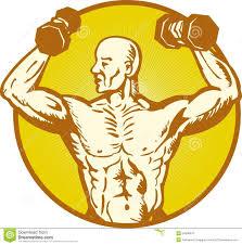 Human Anatomy Male Human Muscle Anatomy Male Human Anatomy Charts
