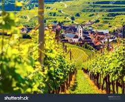 beautiful scenic mountain landscape vineyards old stock photo