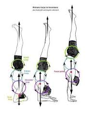 inversion table for lower back pain using an inversion table for back pain imammahdi s com