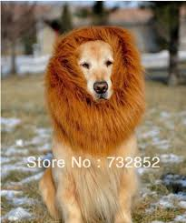 Halloween Costumes Large Dogs Festival Party Pet Costume Lion Mane Wig Large Dogs Lion